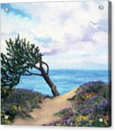 Sea Coast At Half Moon Bay Acrylic Print