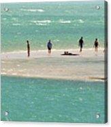 Sea Life Salt Life Key West Style  Acrylic Print