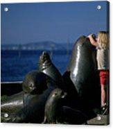 Sea Lion Sculpture  Acrylic Print