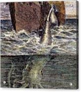 Sea Monster Acrylic Print