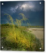 Sea Oats In The Storm Acrylic Print