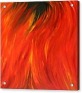 Sea Of Flames Acrylic Print