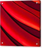Sea Of Red Acrylic Print