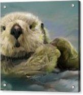 Sea Otter Acrylic Print by Crispin  Delgado