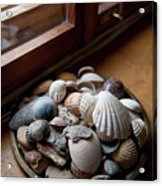 Sea Shells And Stones On Windowsill Acrylic Print