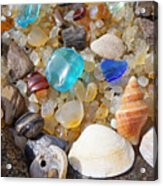 Sea Shells Art Prints Blue Seaglass Sea Glass Coastal Acrylic Print