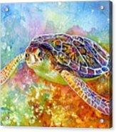 Sea Turtle 3 Acrylic Print