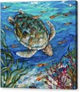 Sea Turtle Dive Acrylic Print