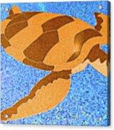 Sea Turtle Inlay In Vibrant Colors Acrylic Print