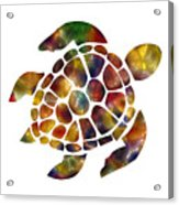 Sea Turtle Acrylic Print