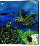 Sea Turtle Rendezvous Acrylic Print
