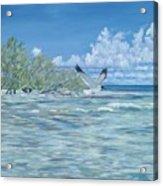 Seablue Acrylic Print