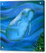 Seacow Named Smiley Acrylic Print