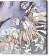 Seadragon Fantasy II Acrylic Print