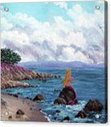 Seagull Cove Acrylic Print