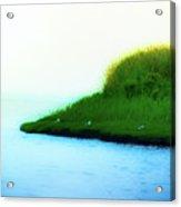 Seagull Island Acrylic Print