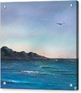 Seagull Seascape Acrylic Print