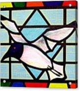 Seagull Serenade Acrylic Print