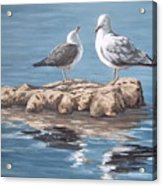 Seagulls In The Sea Acrylic Print