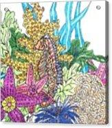 Seahorse Sanctuary  Acrylic Print