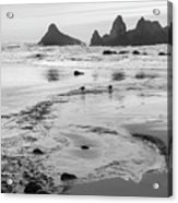 Seal Rock 0169 Acrylic Print