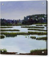 Searching Savannah Marsh By Marilyn Nolan- Johnson Acrylic Print