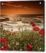 Seascape With Poppies Acrylic Print