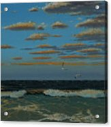 Seascape With Tearns Acrylic Print