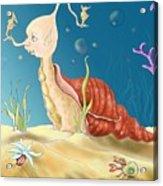 Seashell Guy Acrylic Print