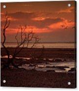 Seashore At Dawn Acrylic Print