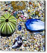 Seashore Colors Acrylic Print