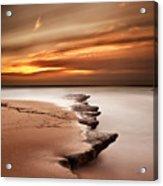 Seashore Wonders Acrylic Print