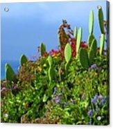 Seaside Garden Acrylic Print
