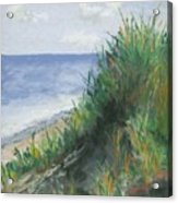 Seaside Acrylic Print by Ginny Neece