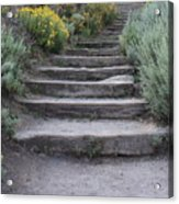 Seaside Steps Acrylic Print