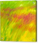 Season Of The Red Grass Acrylic Print