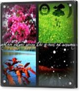 Seasons Acrylic Print