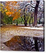 Seasons Changing Acrylic Print