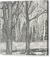 Seasons End Acrylic Print