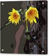 Seasons Ending Acrylic Print