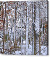 Season's First Snow Acrylic Print
