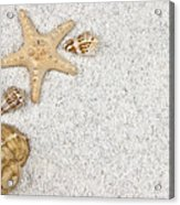 Seastar And Shells Acrylic Print by Joana Kruse