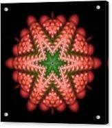 Seastar Lightmandala 2 Acrylic Print