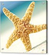 Seastar On Beach Acrylic Print