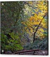Romantic Autumn Rendezvous Acrylic Print