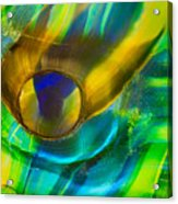 Seaweed Creature Acrylic Print by Omaste Witkowski