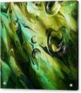 Seaweed Acrylic Print
