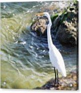 Sebastian Inlet State Park Iv Acrylic Print