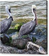 Sebastian Inlet State Park Vii Acrylic Print