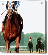 Secretariat Winning The Belmont Stakes, Jockey Ron Turcotte Looking Back, 1973 Acrylic Print
